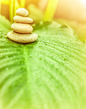 Spa stones on green leaf