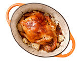golden roasted chicken