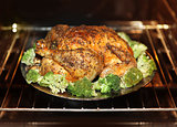 cooking roast turkey