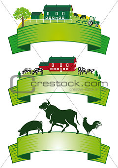 cattle breeding Agriculture