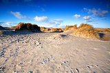 sand dunes on beach in Ijmuiden, Holland