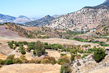 olive tree fields and mountains by Montecorto, Spain