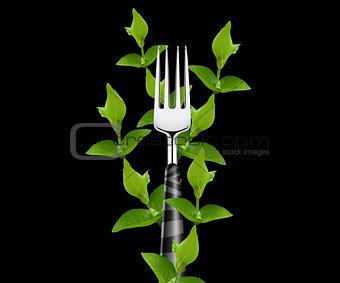 green leaves around Fork