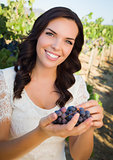 Young Adult Woman Enjoying The Wine Grapes in The Vineyard