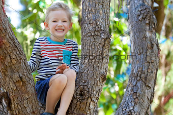 boy at the tree