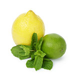 Lemon and lime with mint leaves