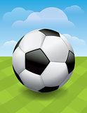 Soccer Ball on Green Soccer Pitch