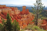 Bryce Canyon (Orange Rock Formation)