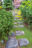 Natural Stone Steps to Frontyard Garden