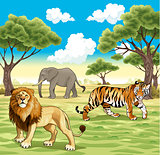 African animals in the nature