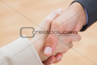 Close up on new partners shaking hands