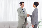 Smiling colleagues shaking hands during meeting
