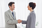 Young colleagues shaking hands during meeting