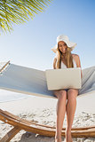 Cheerful blonde sitting on hammock using laptop
