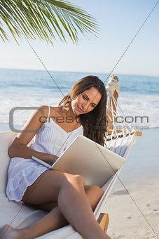 Brunette sitting on hammock using laptop
