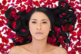 Attractive dark haired model lying in rose petals