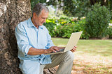 Cheerful mature man sitting on tree trunk using laptop