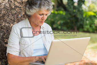 Grey haired woman with a laptop