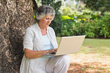 Mature woman typing something into a laptop sitting on tree trunk