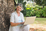 Mature woman using a laptop sitting on tree trunk