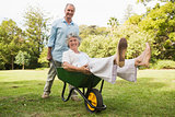 Cheerful man pushing his wife in a wheelbarrow