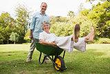Cheerful man pushing his wife in a wheelbarrow