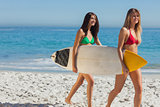 Two gorgeous women in bikinis holding a surfboard