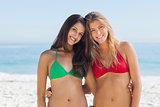 Two pretty friends in bikinis posing