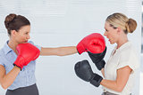 Brown haired businesswoman punching her blond colleague during boxing match