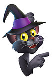 Black cat in witch hat