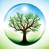 Summer tree inside glass sphere