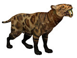 Smilodon Cat on White
