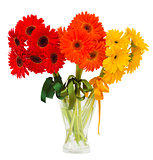 gerbera flowers bouquets in vase