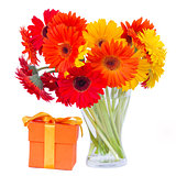 gerbera flowers in glass vase with gift