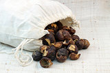 Soap (washing) nuts