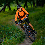 Cyclist Riding the Bike in the Beautiful Summer Forest