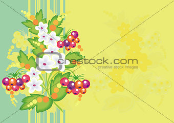 Abstract flowers and berries with background
