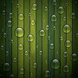 Green background of wood texture
