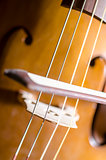 Detail of cello strings and bow