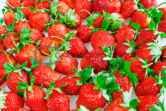 brightly red juicy and ripe strawberry