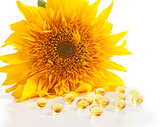 The sunflower and capsules with vitamins A and E