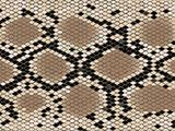 Lozenge pattern snake skin