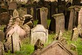 Old Prague Jewish Cemetery
