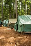 Tents At Summer Camp