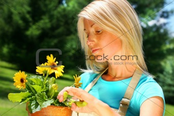 Attractive woman pruning flowers