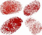 Vector finger print in red