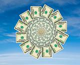 Money flower on a blue sky background