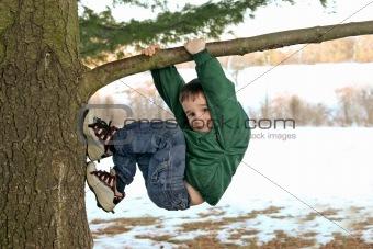 Boy Climbing a Tree in Winter