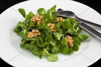 Green cornsalad