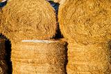 Straw Bale
